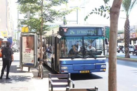 אין אוטובוסים, אין מוניות, שבת שלום 1