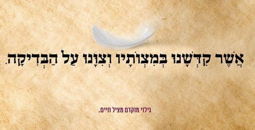 BAZMAN BISHBILECH (2)