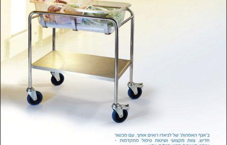 דבר לישראלים בשפתם